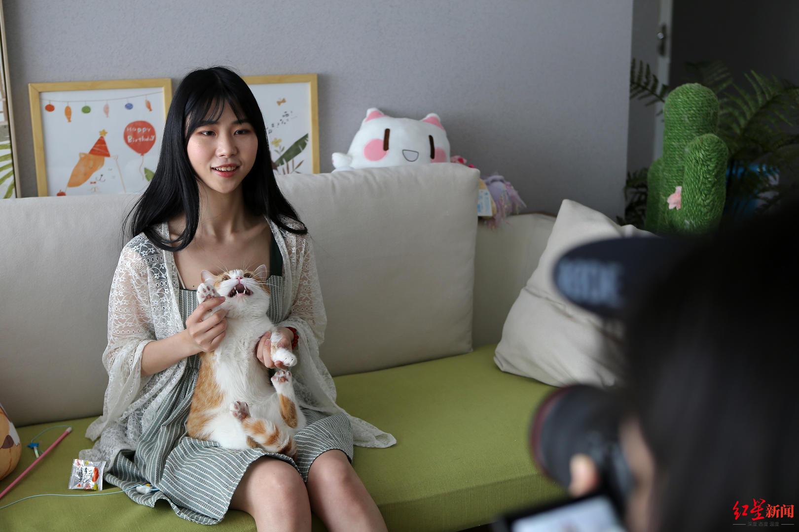 4只网红猫拍猫片年入百万 携猫主人住进130㎡豪宅