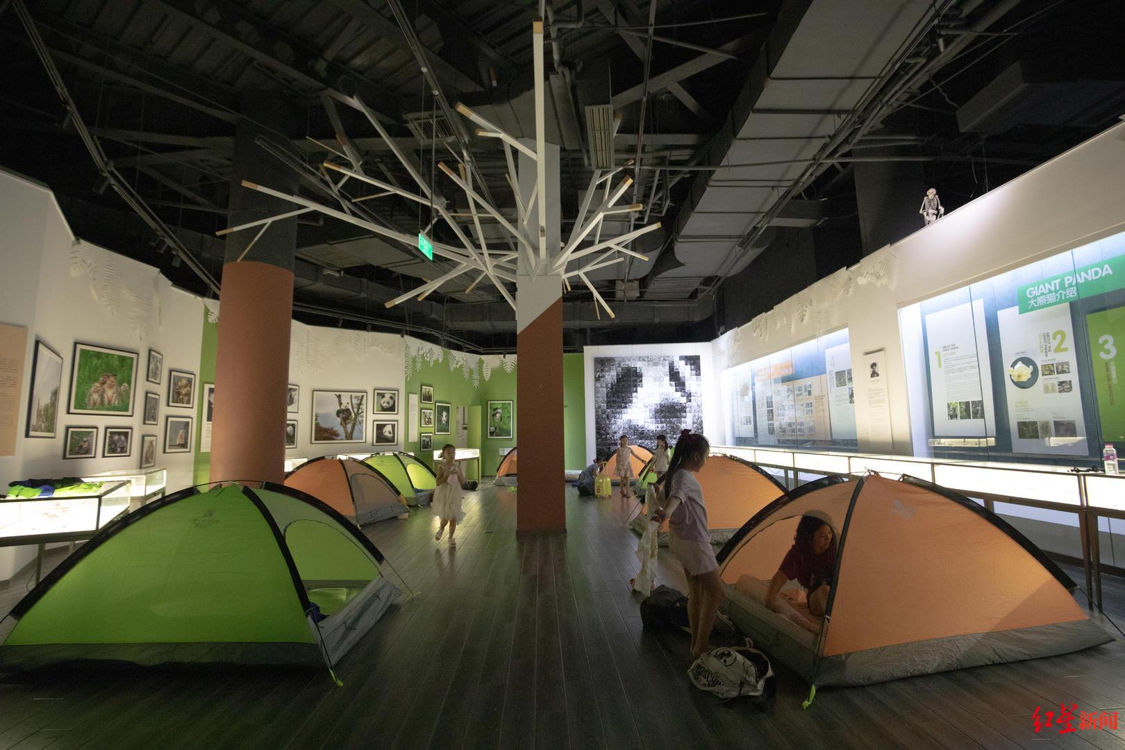 小朋友自己搭帐篷在博物馆过夜.jpg
