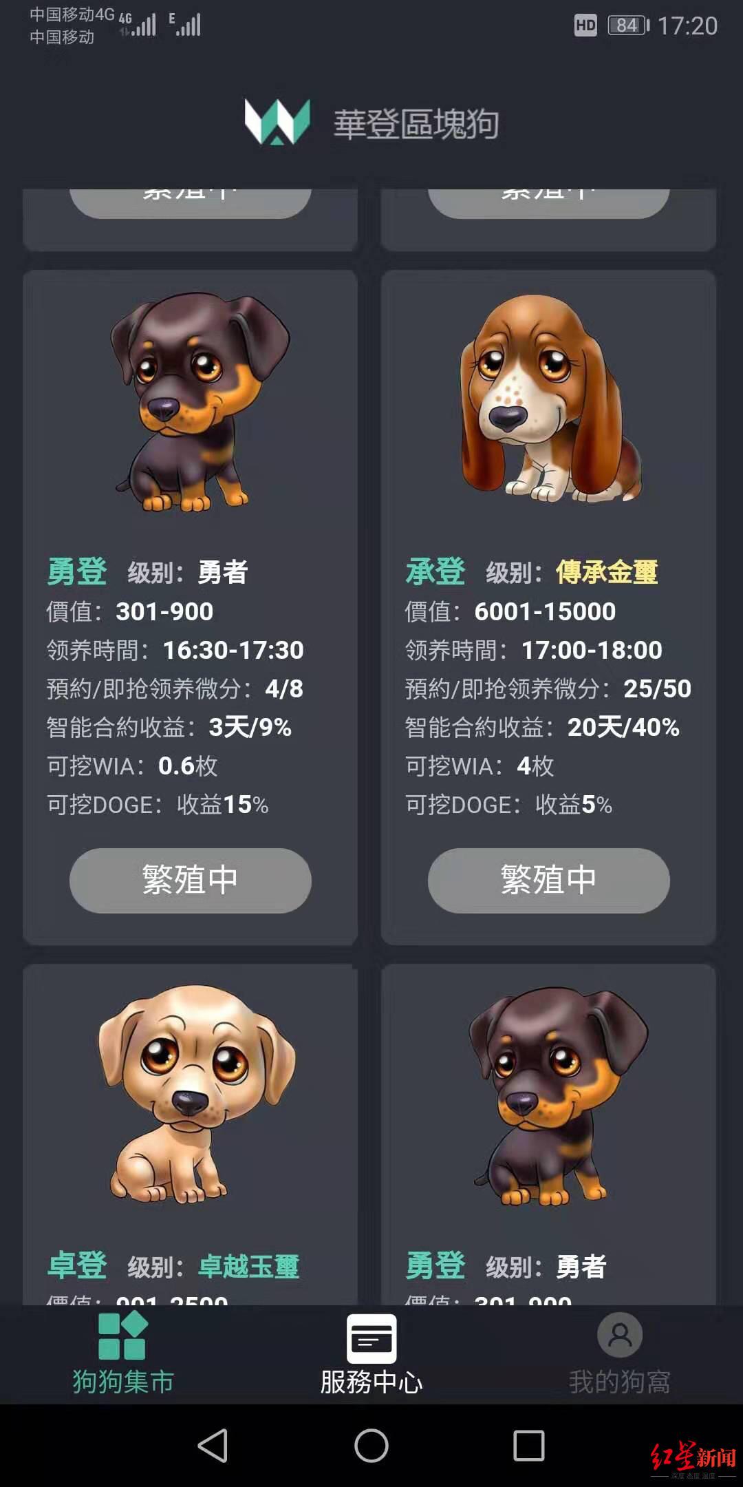 """网上投钱疯狂""""抢狗"""" 400人玩虚拟宠物游戏称被骗300多万"""