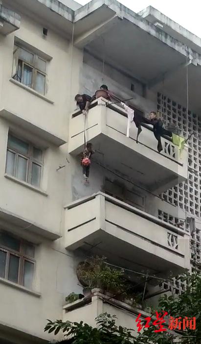 为了救猫,外婆将7岁外孙从5楼吊下3楼 网友:猫才是亲生的
